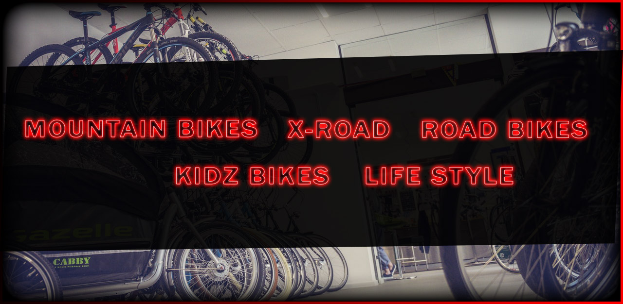 Live 2 Ride Bikes
